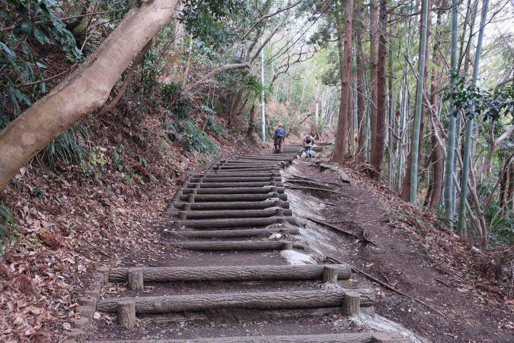梅沢登り口からの登り