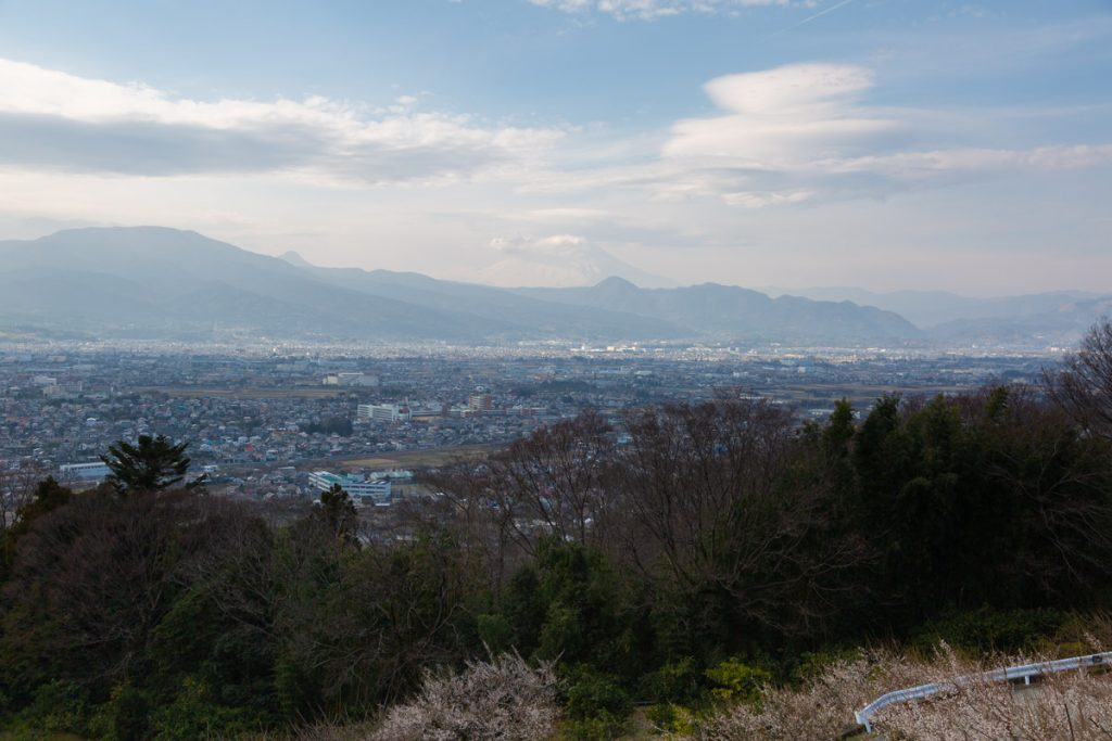 曽我梅林 見晴台からの富士山