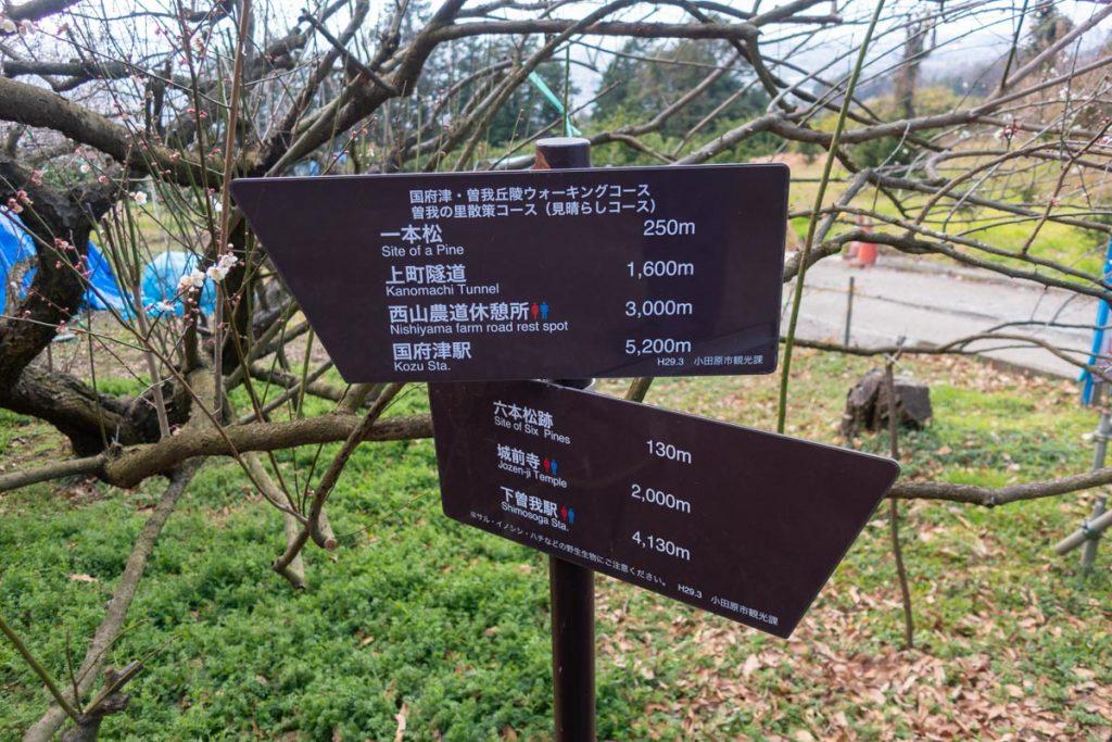 六本松跡からの標識