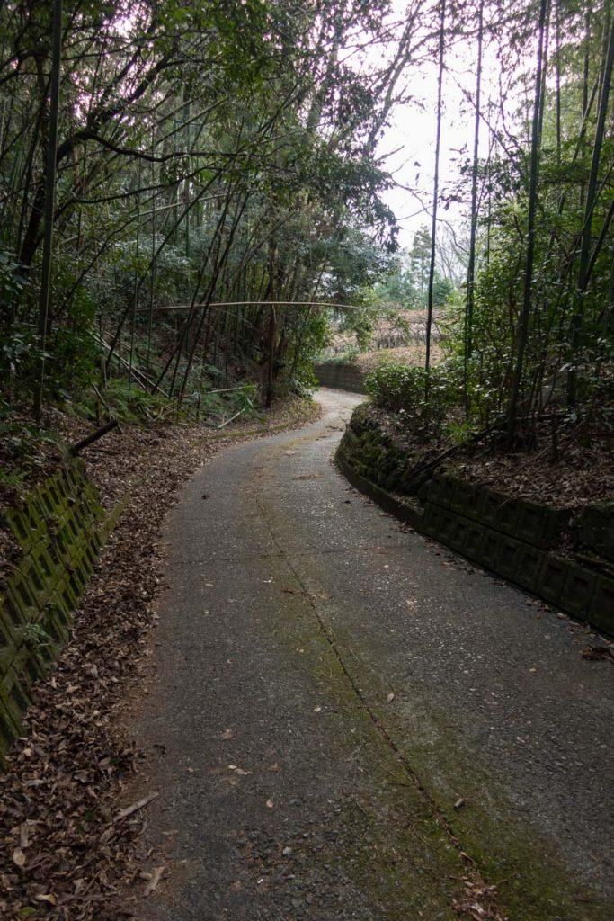 竹林の曲がりくねった道