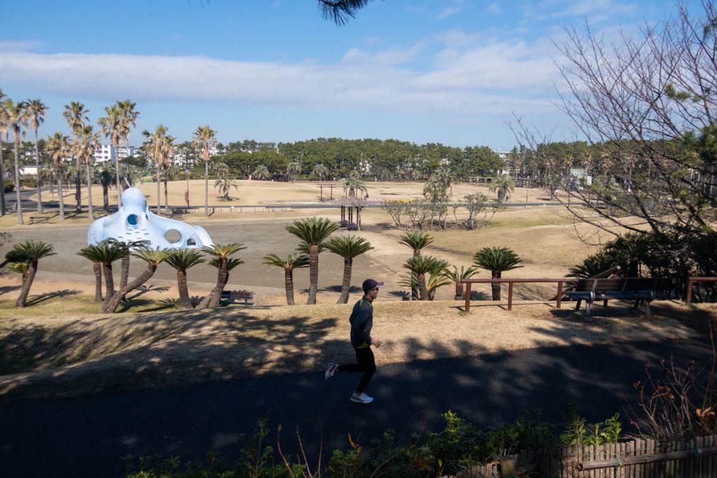 県立辻堂海浜公園